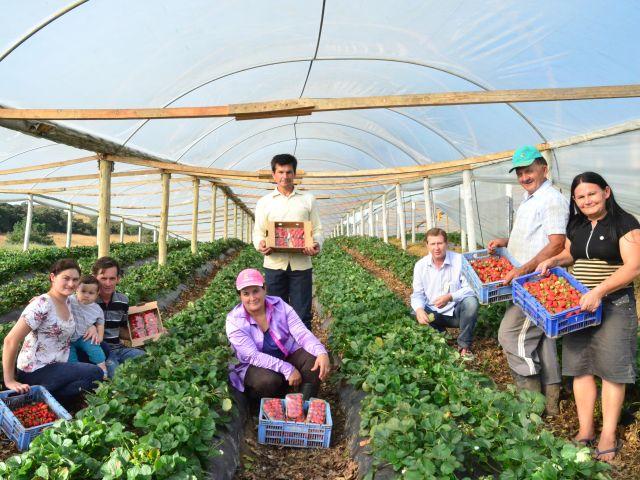 Epagri promove palestras na Semana da Alimentação com certificados