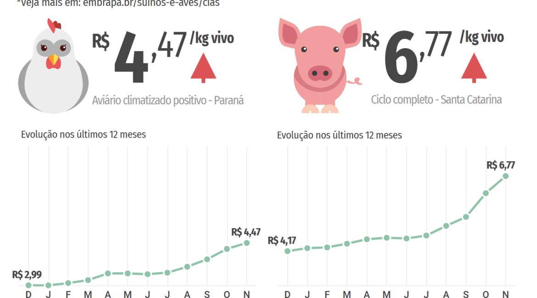 Custos de produção de suínos sobem mais de 50% no ano