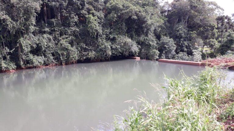 Dejetos suínos lançados no Rio Caçador interrompem abastecimento de água em Seara
