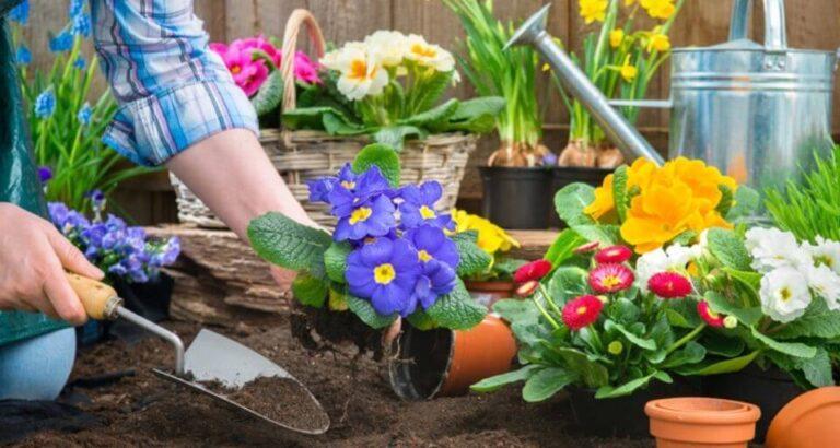 Em abril, cursos serão ofertados para produtores rurais de Seara e Paial