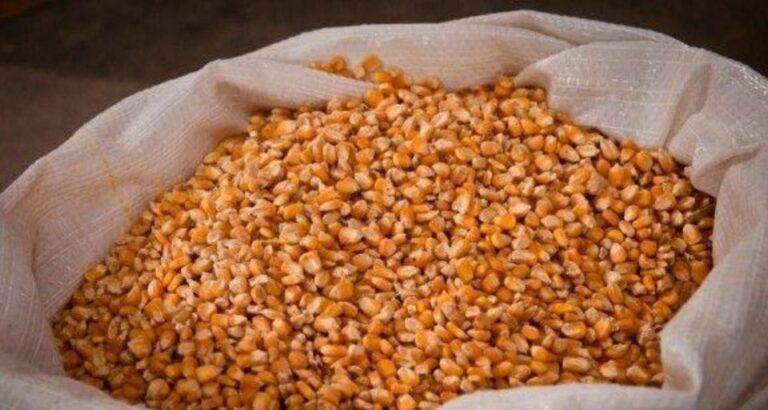 Preços dos alimentos se aproximam de pico de 2011, alerta FAO