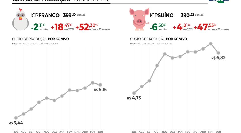 Custos de produção de frangos e de suínos recuam em junho
