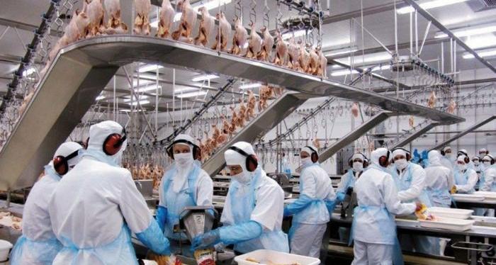 Com dificuldade para preencher 300 vagas em Seara, JBS busca trabalhadores de outras regiões