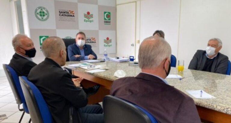 Agronegócio catarinense busca alternativas para o abastecimento de milho